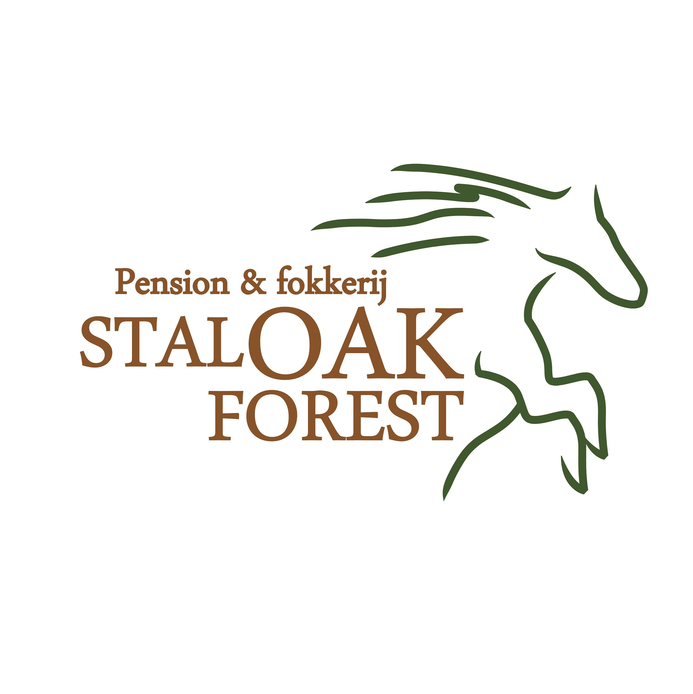 Stal Oak Forest